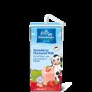 Oldenburger Strawberry milk drink, UHT long-life, 200ml